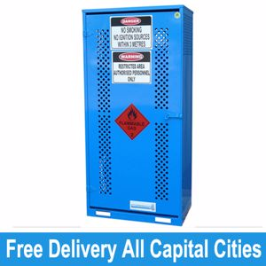 Picture of Single Sided Access Gas Store Cabinet